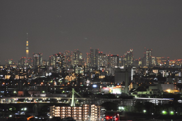 新宿の夜景とスカイツリー